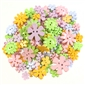 Value Pack Pastel Flowers